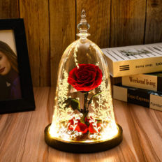 Beauty and The Beast Rose, Preserved Real Rose in a Glass Dome with LED Lights,Gift for Valentine's Day Wedding Anniversary Birthday (Beauty and The Beast Preserved Rose)