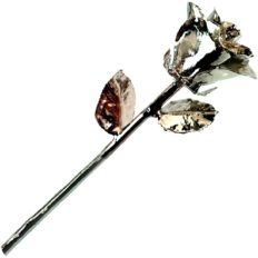 Forever Rose, a Genuine, One of a Kind, Real Rose, Hand Dipped in Platinum to Last a Lifetime